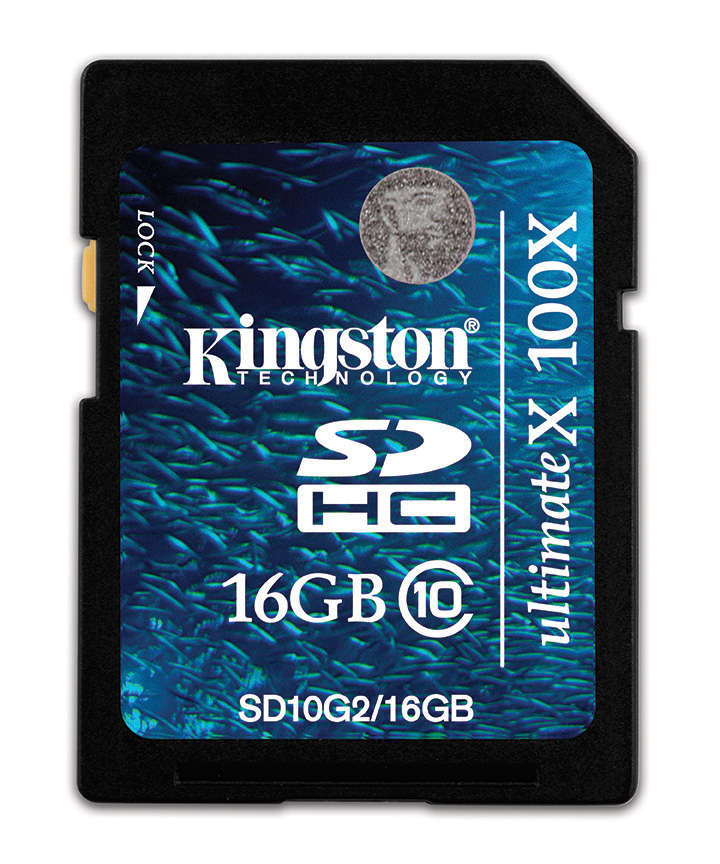 Kingston Technology 16GB SDHC Card 16384 MB Secure Digital High-Capacity (SDHC) 2.3 g 32 mm 2.1 mm 3.3 V